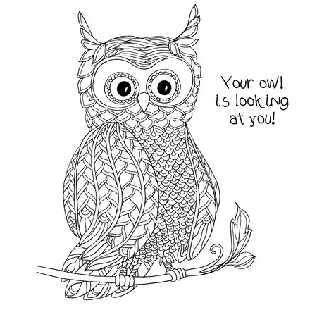 page views: Coloring book for adult and older children. Coloring page with cute owl.  Outline drawing in zentangle style