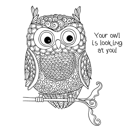 owls: Coloring book for adult and older children. Coloring page with cute owl.  Outline drawing in zentangle style