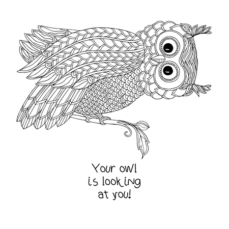 Coloring book for adult and older children. Coloring page with cute owl.  Outline drawing in zentangle style