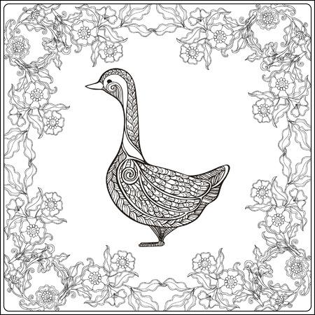dessin au trait: Goose dans le cadre floral. livre à colorier pour les adultes et les enfants plus âgés. Coloriage. Dessin au trait. Vector illustration.
