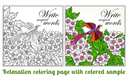 vector sample: Decorative flowers and birds. Coloring book for adult and older children. Coloring page with space for text, with colored sample Outline drawing. Vector illustration. Illustration