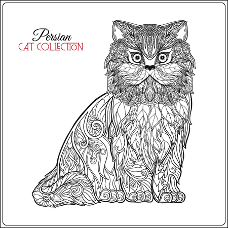 persian cat: Decorative persian cat. Vector illustration. This illustration can be used as a greeting card or as a print on T-shirts and bags.
