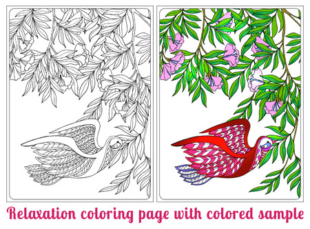 vector sample: Decorative flowers and bird. Coloring book for adult and older children. Coloring page with colored sample. Outline drawing. Vector illustration. Illustration