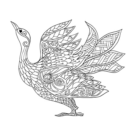 Decorative Bird Coloring Book For Adult And Older Children Page Outline Drawing