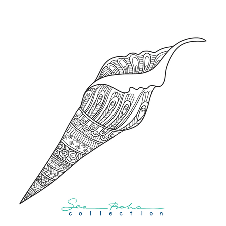 etnic: Sea shell. Element from Sea boho collection. Vector illustration.