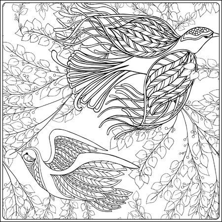 Modelo Floral De La Vendimia Dibujo De Esquema Libro De
