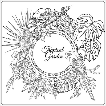 foe: Tropical animals and plants composition with space for text. This illustration can be used foe adult coloring book. Vector illustration. Illustration