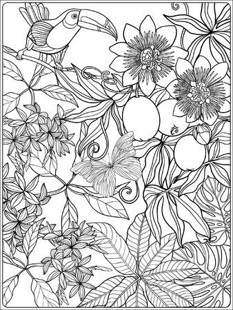 Tropical oiseaux et de plantes sauvages. collection de jardin tropical. Coloriage. livre à colorier pour les adultes et les enfants plus âgés. Outline illustration vectorielle. Banque d'images - 60088095