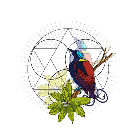 Tropical animals and plants ?n background with sacred geometry symbol. Vector illustration.