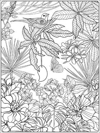 Tropical oiseaux et de plantes sauvages. collection de jardin tropical. Coloriage. livre à colorier pour les adultes et les enfants plus âgés. Outline illustration vectorielle. Banque d'images - 60088306