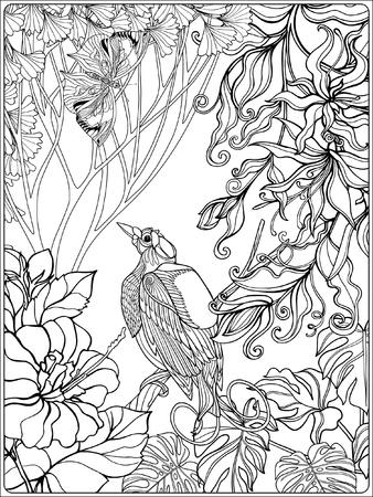 Tropical oiseaux et de plantes sauvages. collection de jardin tropical. Coloriage. livre à colorier pour les adultes et les enfants plus âgés. Outline illustration vectorielle. Banque d'images - 60088342