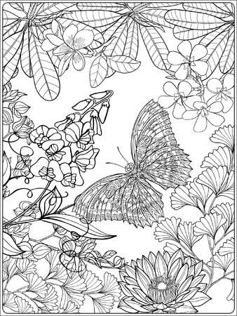 Tropical oiseaux et de plantes sauvages. collection de jardin tropical. Coloriage. livre à colorier pour les adultes et les enfants plus âgés. Outline illustration vectorielle. Banque d'images - 60088410