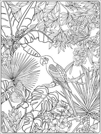 Tropical oiseaux et de plantes sauvages. collection de jardin tropical. Coloriage. livre à colorier pour les adultes et les enfants plus âgés. Outline illustration vectorielle. Banque d'images - 60088549