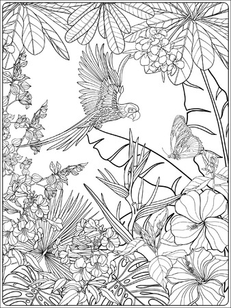 tropical garden: Tropical wild birds and plants. Tropical garden collection. Coloring page. Coloring book for adult and older children.  Outline vector illustration.