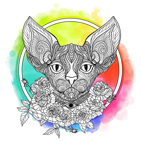 head collar: Sphinx cat. Decorative cat head with roses collar on watercolor rainbow background. Vector illustration in zendoodle style. This illustration can be used as a greeting card or as a print on T-shirts and bags. Illustration