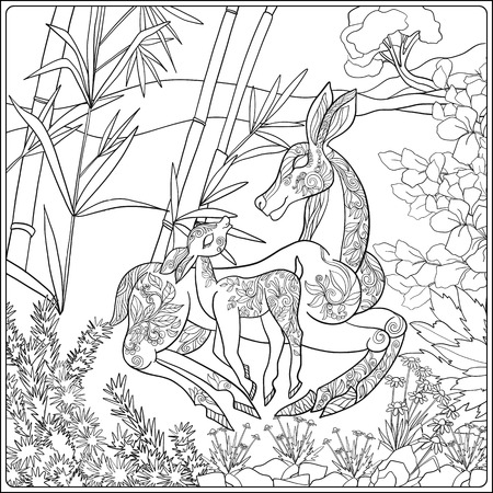 mother and baby deer: Coloring book for adult and older children. Coloring page with lovely mother deer and her small fawn in the garden. Illustration