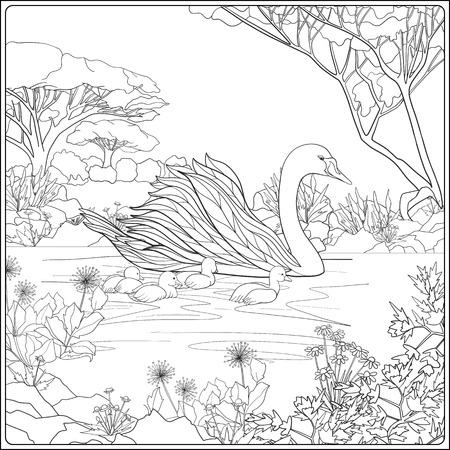 Kleurboek voor volwassenen en oudere kinderen. Kleurplaat met mooie moeder zwaan en haar kleine kuikens in het meer tuin.