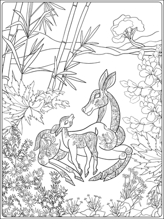 fawn: Coloring book for adult and older children. Coloring page with lovely mother deer and her small fawn in the garden. Illustration
