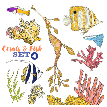 coral colored: Coral reef and fish set. Colored Vector illustration.