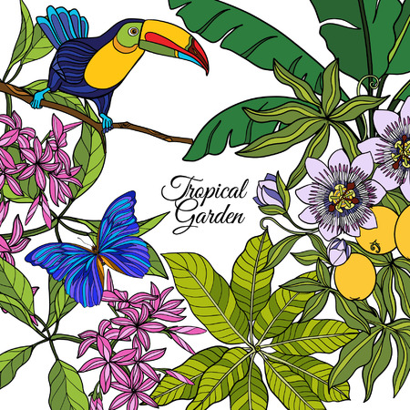 Tropical wild birds and flowers and space for text. Colored vector illustration. Illustration