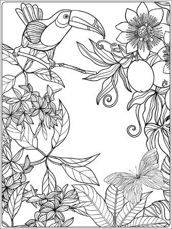 열대 야생 조류와 식물. 열 대 정원 컬렉션입니다. 색칠 공부. 성인 및 노약자를위한 색칠하기 책. 벡터 일러스트 레이 션. 벡터 (일러스트)