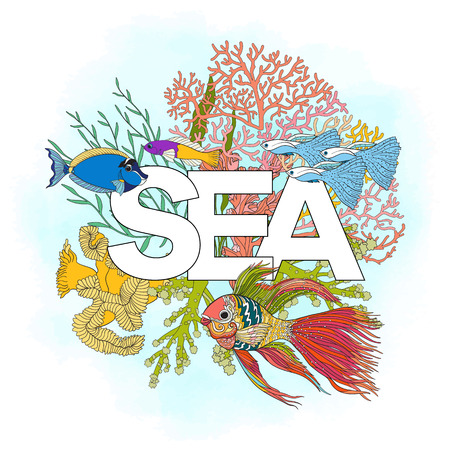 coral colored: Coral reef with corals and fish and word sea. Card, banner. Colored Vector illustration. Stock Photo