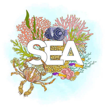 superscription: Coral reef with corals and fish and word sea. Card, banner. Colored Vector illustration. Illustration