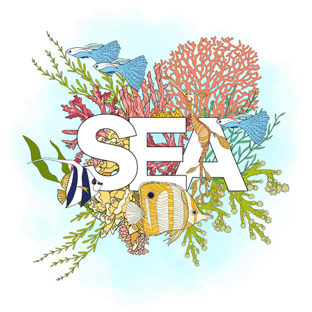 school of fish: Coral reef with corals and fish and word sea. Card, banner. Colored Vector illustration. Stock Photo