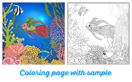 seaweeds: Adult coloring book. Coloring page with underwater world coral reef with colored sample. Corals, fish and seaweeds.  Outline vector illustration.