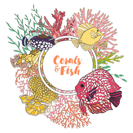 coral colored: Coral reef with corals and fish. Card, banner with space for text. Colored Vector illustration. Stock Photo