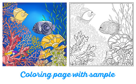 coral colored: Adult coloring book. Coloring page with underwater world coral reef with colored sample. Corals, fish and seaweeds.  Outline vector illustration.