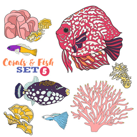 Coral reef and fish set. Colored Vector illustration.