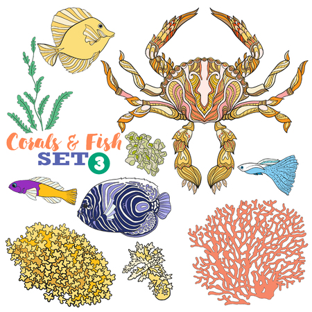 reef: Coral reef and fish set. Colored Vector illustration.