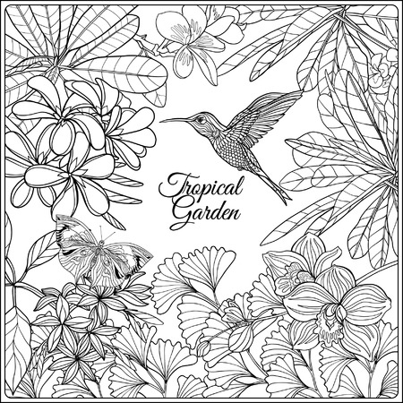 bird illustration: Tropical wild birds and flowers and space for text. Coloring book for adult and older children. Coloring page. Outline vector illustration.