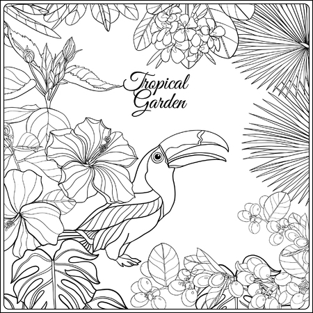 Tropical wild birds and flowers and space for text. Coloring book for adult and older children. Coloring page. Outline vector illustration.