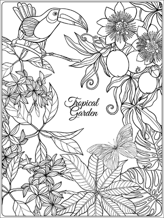 Pájaros Tropicales Y Flores Silvestres Y El Espacio Para El Texto ...