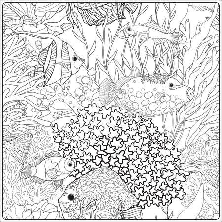 Modelo con los corales y decorativos mar o peces de acuario. Ilustración del vector. Libro de colorante para los adultos y niños mayores. Esbozar dibujo para colorear.