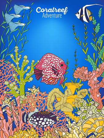 coral colored: Underwater world coral reef. Banner with space for text. Corals, fish and seaweeds. Colored vector illustration. Illustration