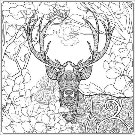 buisson: Coloriage avec des cerfs dans la forêt. livre à colorier pour les adultes et les enfants plus âgés. Vector illustration. Dessin au trait.