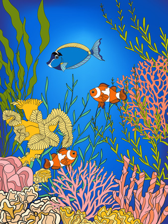 coral colored: Underwater world coral reef. Corals, fish and sefweeds. Colored vector illustration.