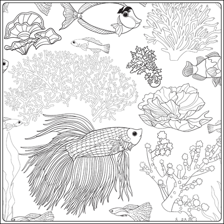 Motif de coraux décoratifs et de la mer ou les poissons d'aquarium. Vector illustration. livre à colorier pour les adultes et les enfants plus âgés. Outline dessin de coloriage page. Banque d'images - 62951956