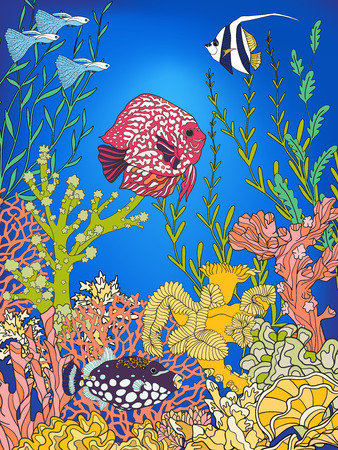 Underwater world coral reef. Corals, fish and sefweeds. Colored vector illustration.