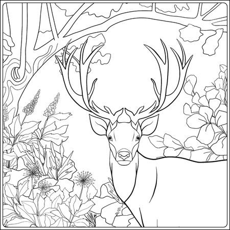 Dibujo para colorear con los ciervos en el bosque. Libro de colorante para los adultos y niños mayores. Ilustración del vector. Dibujo de esquema. Ilustración de vector