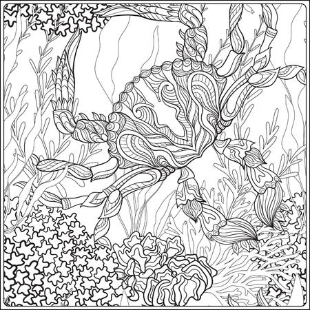 장식 산호와 바다 또는 수족관 물고기와 패턴. 벡터 일러스트 레이 션. 성인 및 노약자를위한 색칠하기 책. 외곽선 그리기 색칠 공부 페이지.