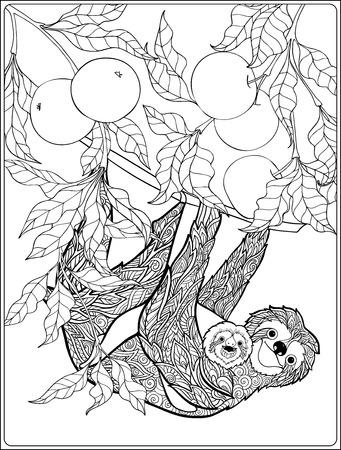 Malvorlage mit schönen Faultier im Wald. Malbuch für Erwachsene und ältere Kinder. Vektor-Illustration. Umrisszeichnung. Standard-Bild - 62951908