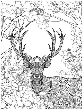 Coloring Page With Deer In Forest Book For Adult And Older Children Stock