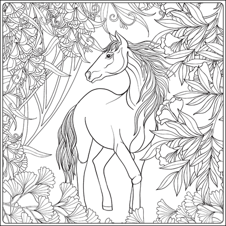 steed: Horse in garden. illustration. Coloring book for adult and older children. Outline drawing coloring page. Illustration