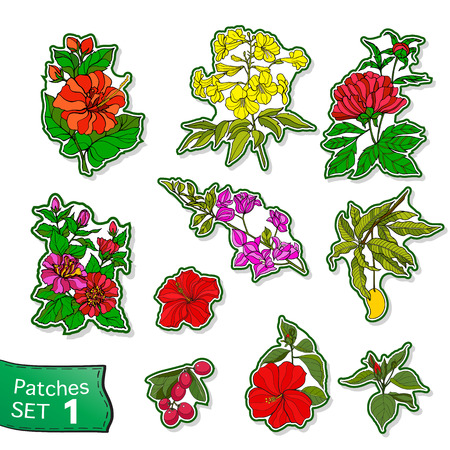 Fashion patch set, badges with tropical flowers and trees. This illustration can be used as a print on T-shirts, bags, tattoo, badges or patch Stock line vector illustration.