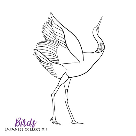 Japanese crane. Coloring book for adult. Outline drawing coloring page. Stock line vector illustration.