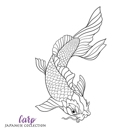 carp fish: Japanese carp fish. Coloring book for adult. Outline drawing coloring page. Stock line vector illustration.